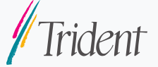 Trident Microsystems, Inc